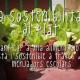 La Sostenibilitat al Plat: Video